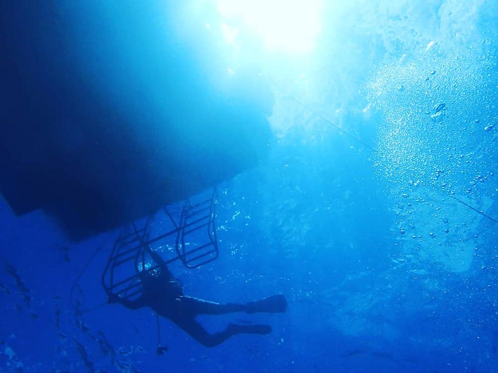 沖縄 ボートダイビング ファンダイビング ダイブコーヴィー