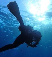 スタッフ募集 プロダイバー ダイビングの求人