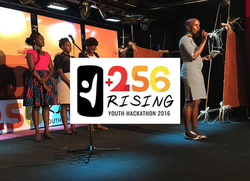 256 rising