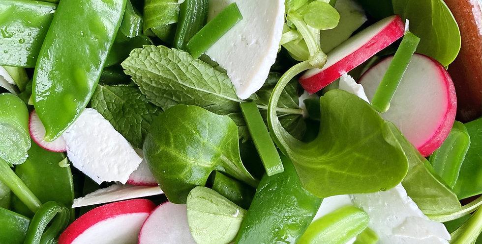 Woensdag: Voorjaarssalade met radijs en ricotta salata