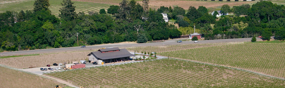 aerial shot of rued winery and vineyards