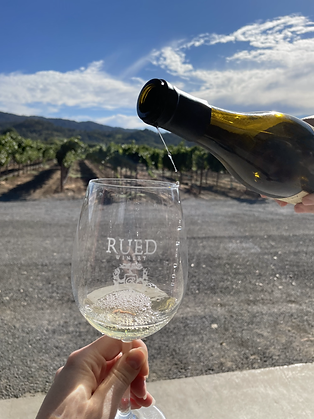 pouring white wine into a Rued winery glass