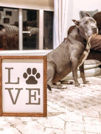 Dog Lover - Paw Print Sign - Wood Sign - Pet Wood Sign