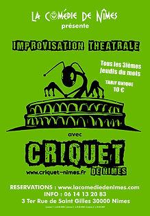 CRIQUET CDN (affiche).jpg