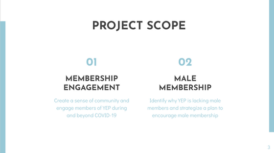 The Project Scope