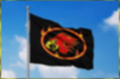 DFB Flag Mockup.jpg