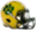 Bunn Wildcats - helmet right-sm.png