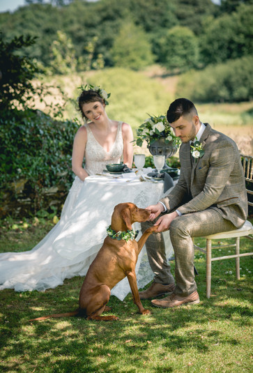 Country Elopement In Beautiful Cornwall