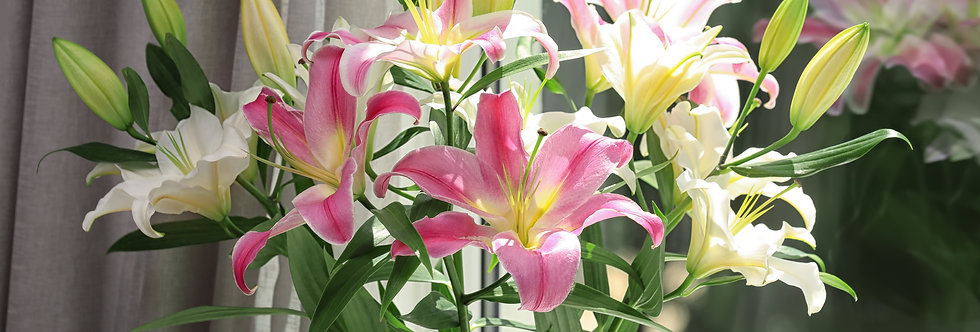 ALL LILY BOUQUET