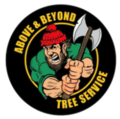 Above and Beyond Logo.png