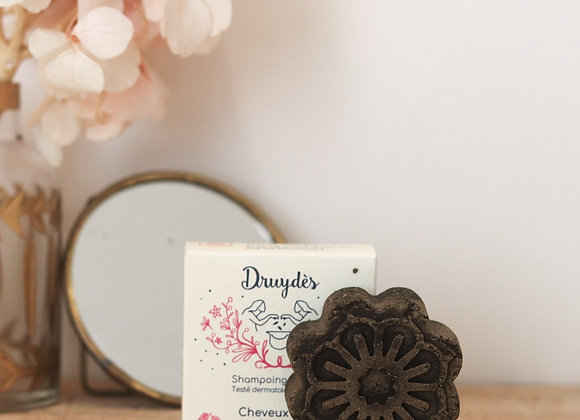 Shampoing solide cheveux secs - Druydès