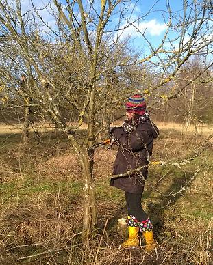 180202 Kirkstall Orchard Pruning HW 7.jp
