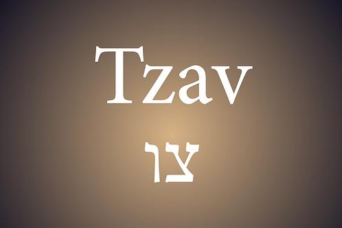 Parasha Tzav
