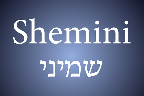 Parasha Shemini