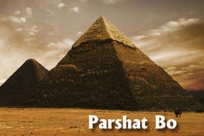 "Parashat BO 02.02.2020: ""Moshe and The Vegetarian Argentine"""