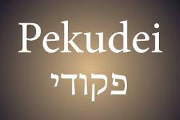 Parasha Pekudei