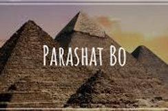 PARASHA BO: COMINGS AND GOINGS. 01/17/2021