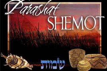 Parasha Shemos