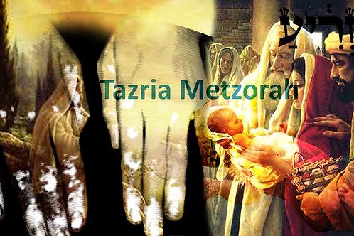 PARASHAT TAZRIA METZORAH-04/26/2020