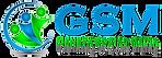 Logos%20GSM-5_edited.png