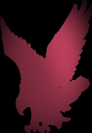 ILTexas Eagles