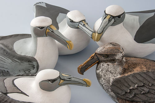 Ceramic Shy Albatross Sculptures by Eve Howard