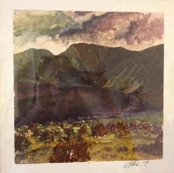 Cameron-landscape