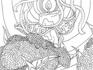 Remembrance Flower - Celosia