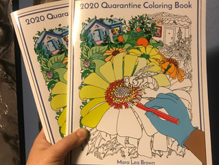 2020 Quarantine Coloring Book - Printed Copy Available!