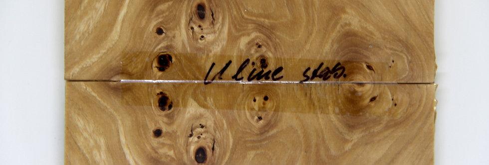 Ulme-Schalenpaar stab. 35