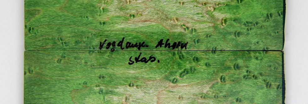 stab. Vogelaugenahorn 26