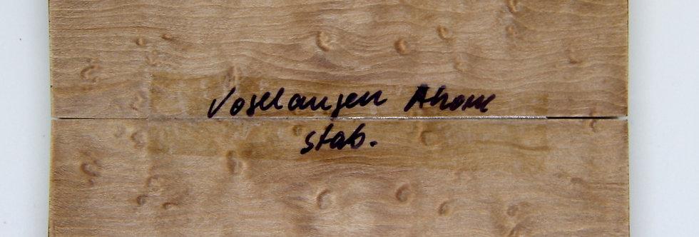 stab. Vogelaugenahorn 39