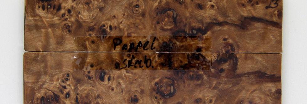 Pappel-Schalenpaar stab. 23