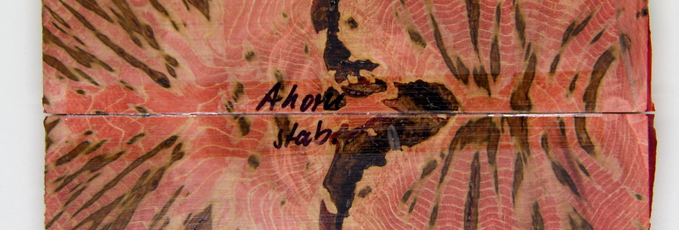 stab. Ahorn-Schalenpaar 33