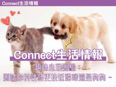 🤍趣味心裡測驗:測試你的性格更接近貓咪還是狗狗~