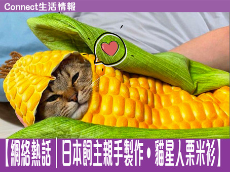 🤍【網絡熱話 日本飼主親手製作•貓星人栗米衫】🤍