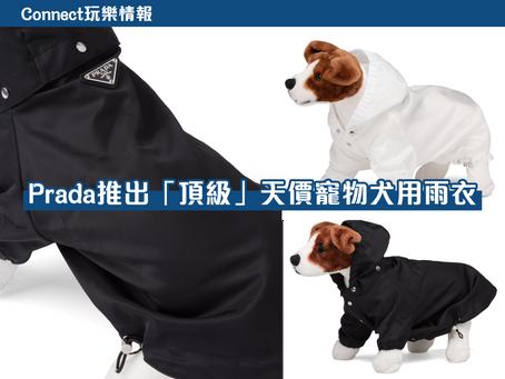 【寵物】Prada推出寵物犬用雨衣