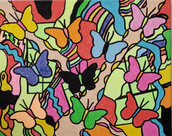 Butterfly Collection Steven Calapai Goog