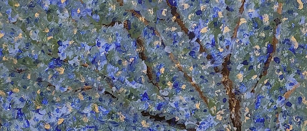 Blue Jacaronda