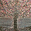"""Thumbnail: """"Blossoms at Night"""" An Original Painting"""
