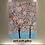 "Thumbnail: ""Sakura in Bloom"""