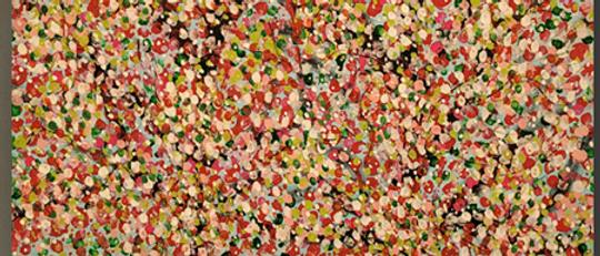 Sakura-Cherry Blossom Collection Steven Calapai