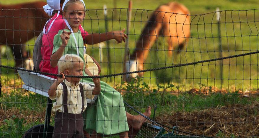 Amish Berne IN.jpg