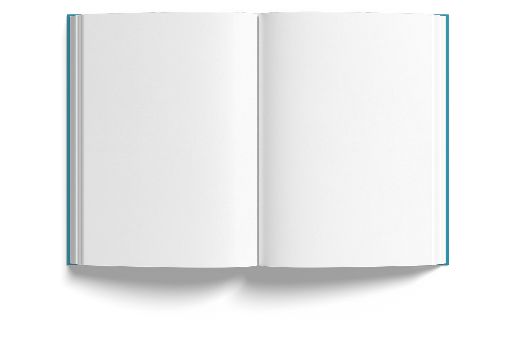 Book Open Mockup.png