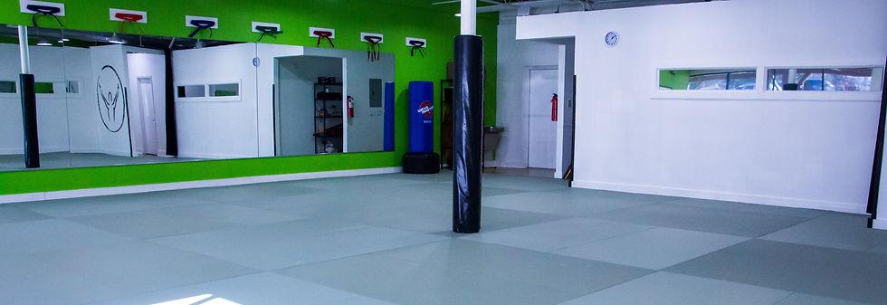 martial arts lakeway, karate Lakeway, jiu jitsu classes Lakeway