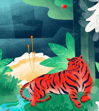 Illustrated Tiger
