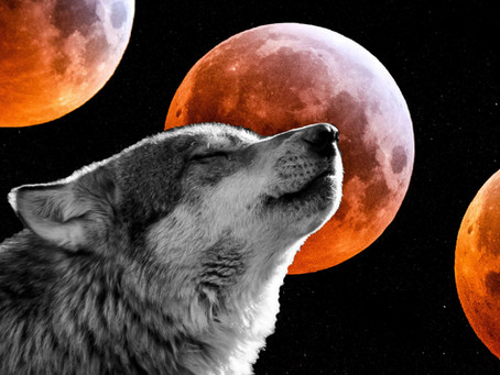 Full Wolf Moon Lunar Eclipse in Cancer- Transforming with the Mother