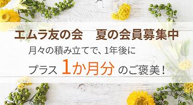 link_tomo01.png