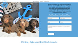 Arkansas Dachshunds