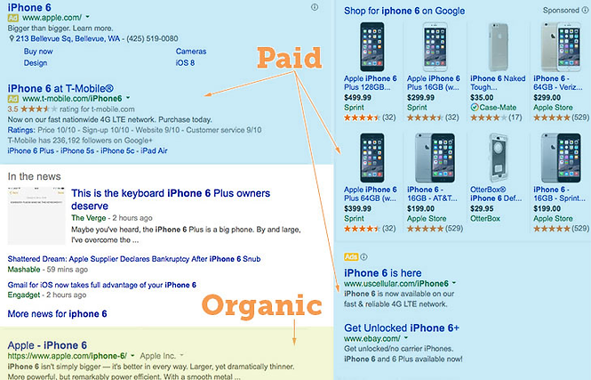 paid-vs-organic-listings.png